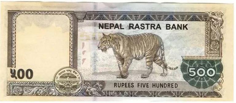 रु ५ सयको नयाँ नोटमा एउटा बाघ गायब