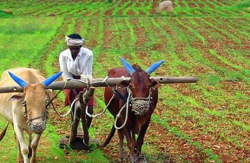 अर्बौँ रकम दुरुपयोगः किसानको बजेटमा परामर्शदाताको रजाइँ