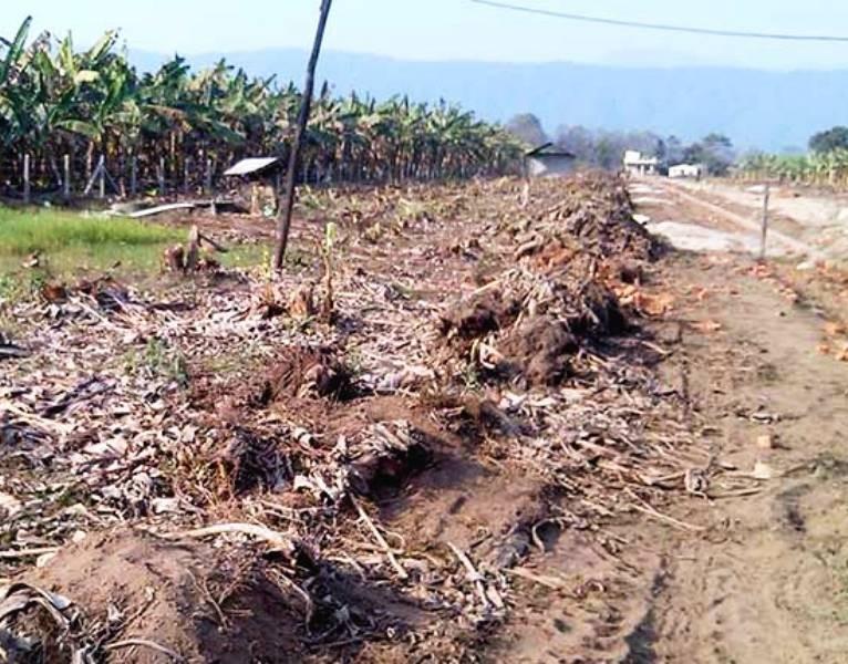 प्लटिङले मासिँदैं कृषियोग्य जमिन