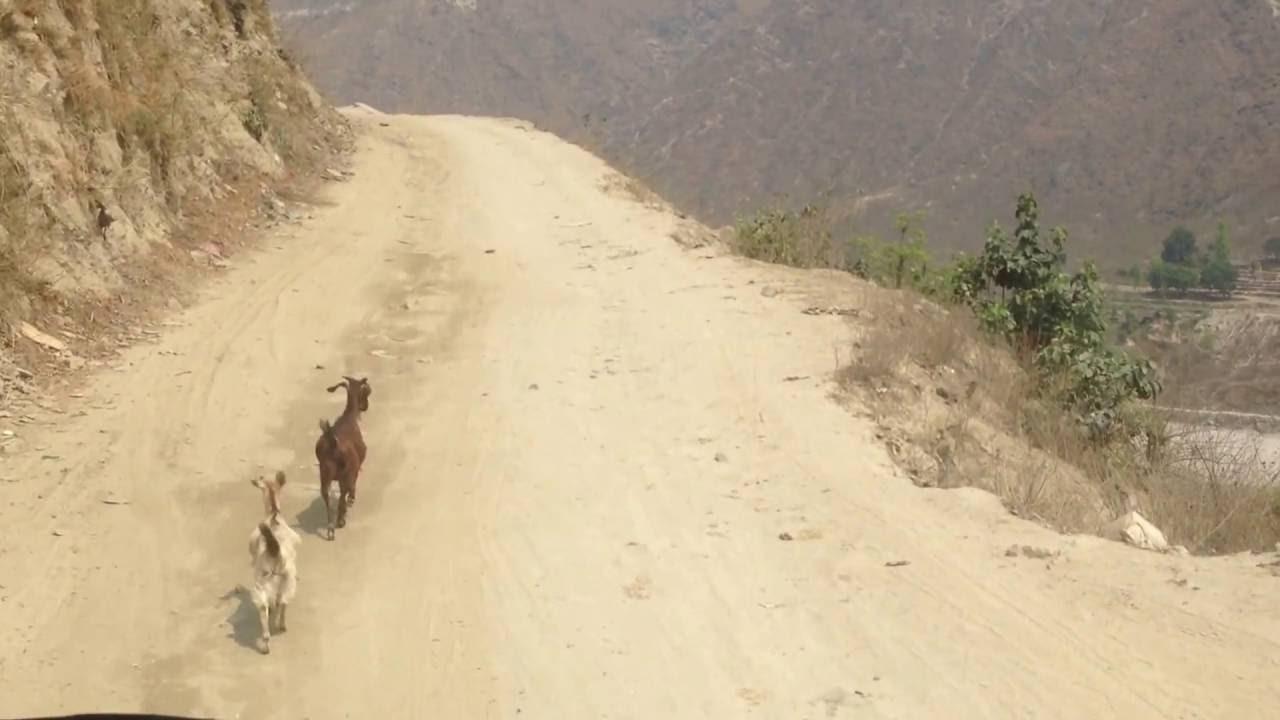 बोझेखोला–सुनकोशी ग्रामीण सडक सञ्चालनमा