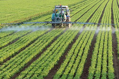 'कृषिलाई यान्त्रिकीकरण र विविधीकरण गर्नुपर्छ'