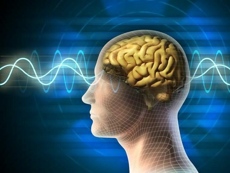 अष्ट्रेलियाका वैज्ञानिकहरुको विशेष खोजः इन्टरनेट धेरै चलाउँदा मस्तिष्कमा हुनसक्छ यस्तोसम्म