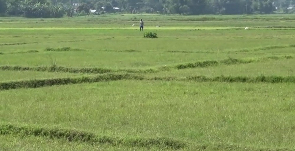 खेतीयोग्य जमिन २५ प्रतिशत जमिन बाँझो