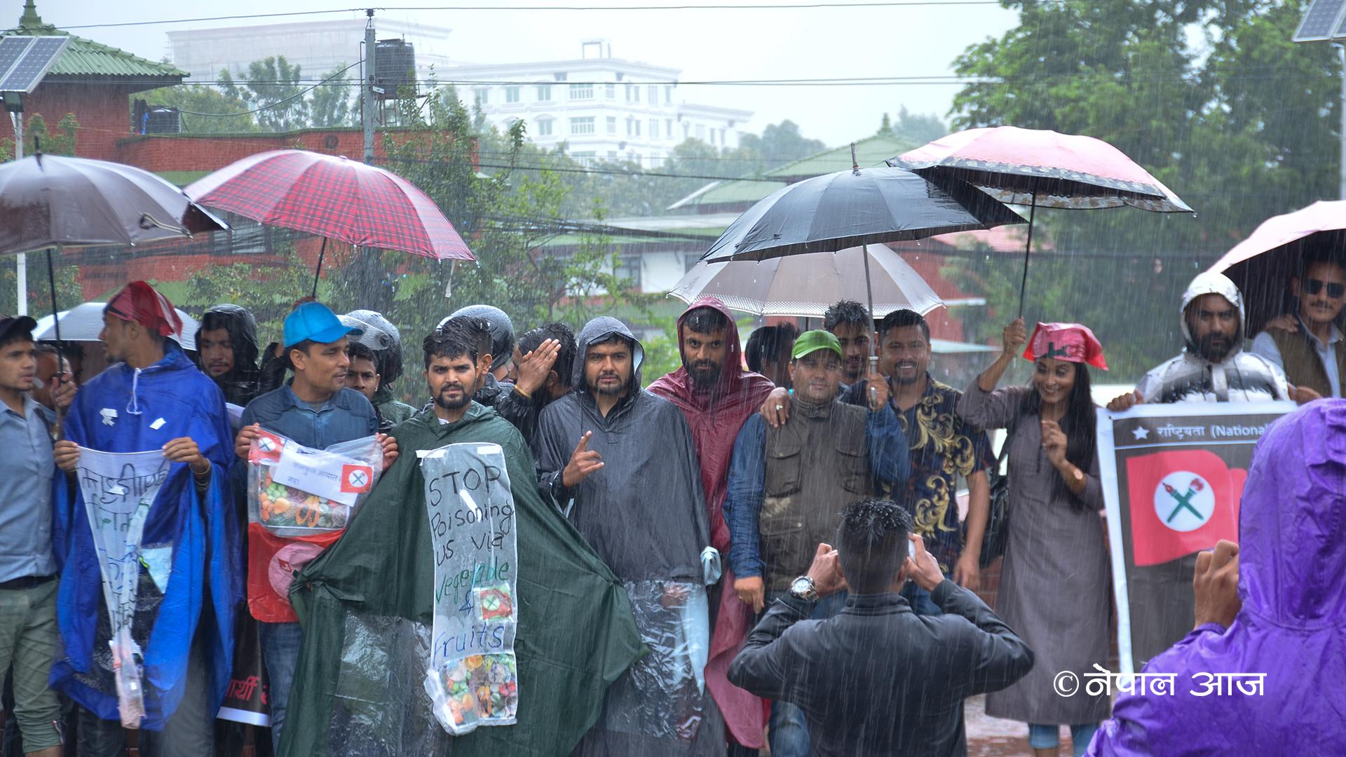 झरीमा रुझ्दै सरकारविरुद्ध नेविसंघको प्रदर्शन