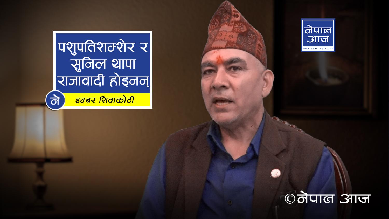 विवादास्पद मन्त्री बर्खास्त नगरे सरकार दुर्घटनामा (भिडियोसहित )
